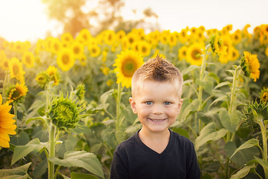 Sunflower boy.jpg