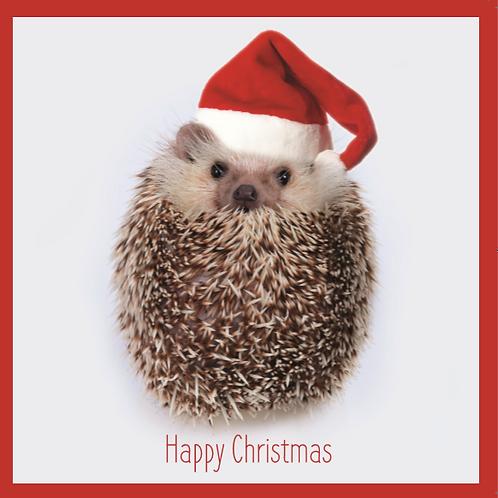 'Santa's Little Helper' Hedgehog Charity Christmas Card