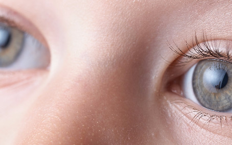 Eye gaze measures could be important for improving medication trials for Fragile X Syndrome.