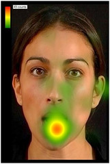 Face Scanning and language development