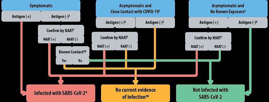 antigen-test-g1-updated.png