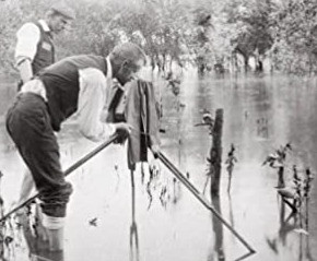 Les origines de la photographie animalière en quelques clés