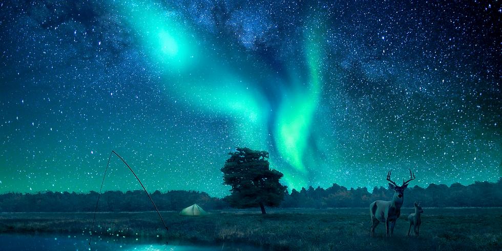 New Earth Wayshowers - Meditation & Energiarbete Cirkel