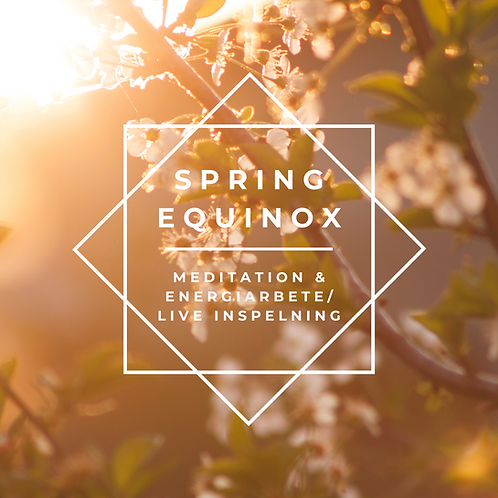 Spring Equinox -Meditation & Energiarbete