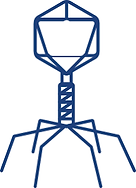 bacteriophage.png