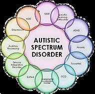 Autism_Spectrum_Disorder_edited_edited_e
