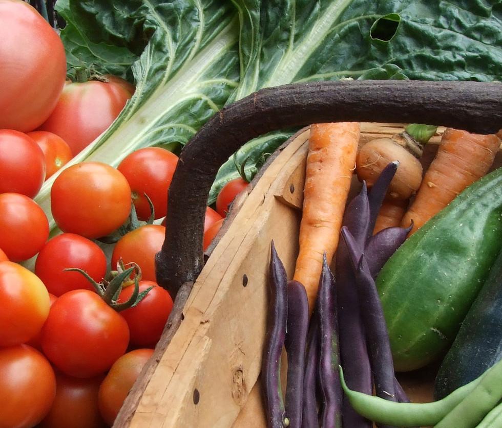 Homegrown food