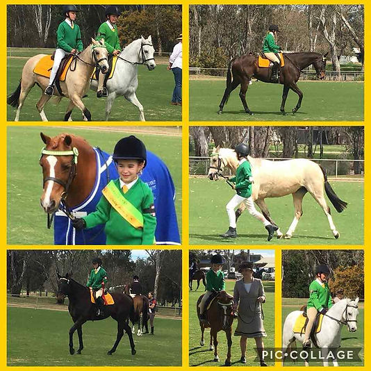 Seymour Pony Club Dressage Championships and combined training