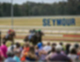 Enjoy all country racing has to offer at one of Victoria's premier race tracks located in the heartland of Victoria's Thoroughbred Country in an intimate setting, with sweeping views of the course. Get up close and personal with jockeys and trainers from all over the state, whilst enjoying all of the racing action right from the Mounting Yard to the Winning Post at your leisure. We encourage racegoers to embrace country casual; where you can enjoy backing a winner from our bars and bookmakers on course. We also offer plenty of outside grandstand seating for those looking to watch the races from a great undercover spot. Parking is FREE. We look forward to welcoming you to Seymour!