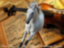Event'Arts compagnie de spectacles équestres