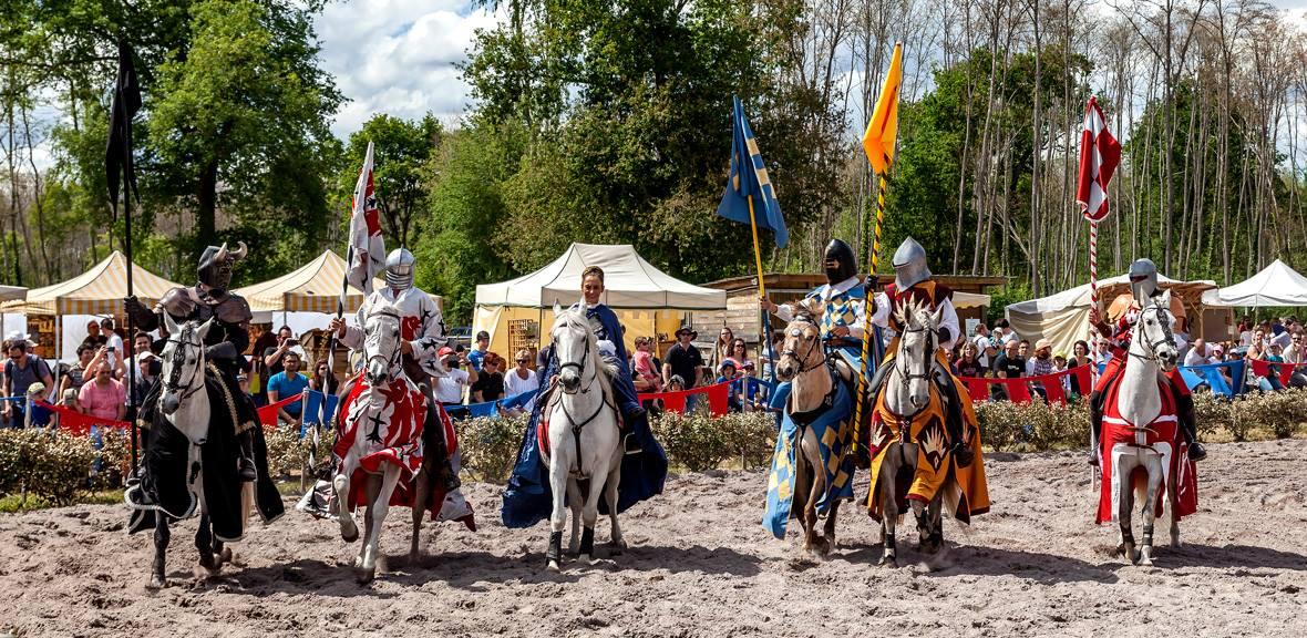 les chevaliers 2017