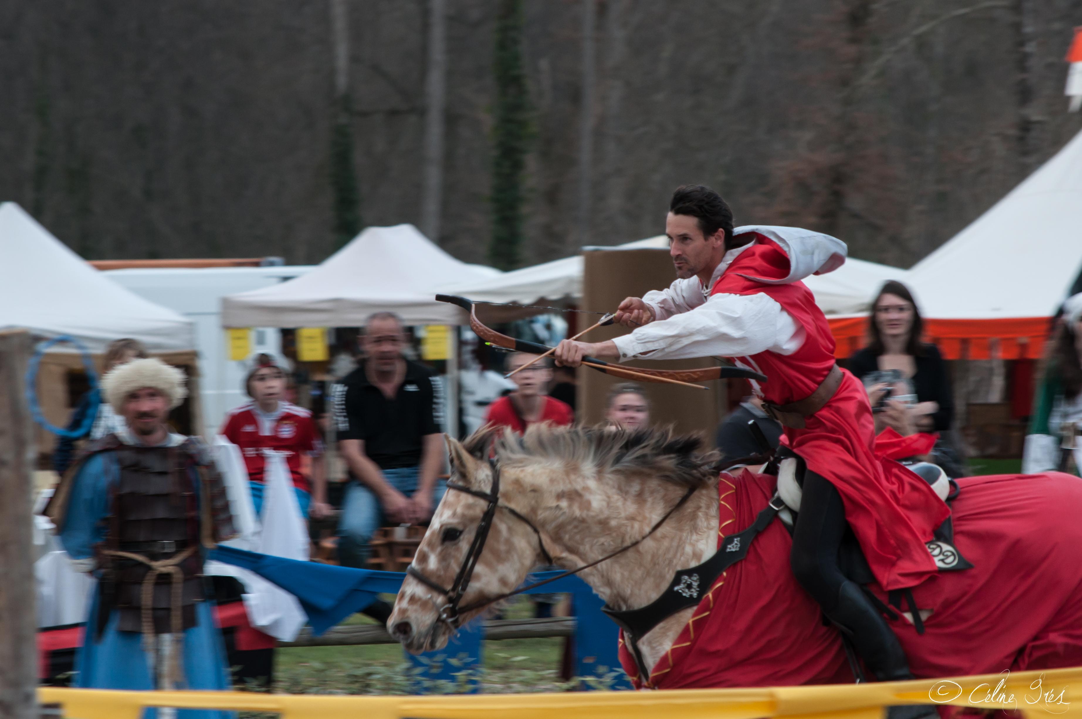 chevalier david voltige 3