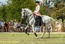 Spectacle_Equestre_du_23_Août_2020-8089