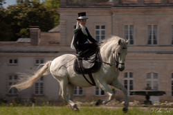 Event'arts_Chateau _26062016-103