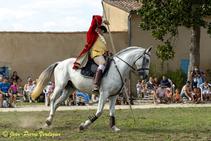 Spectacle_Equestre_du_23_Août_2020-8289