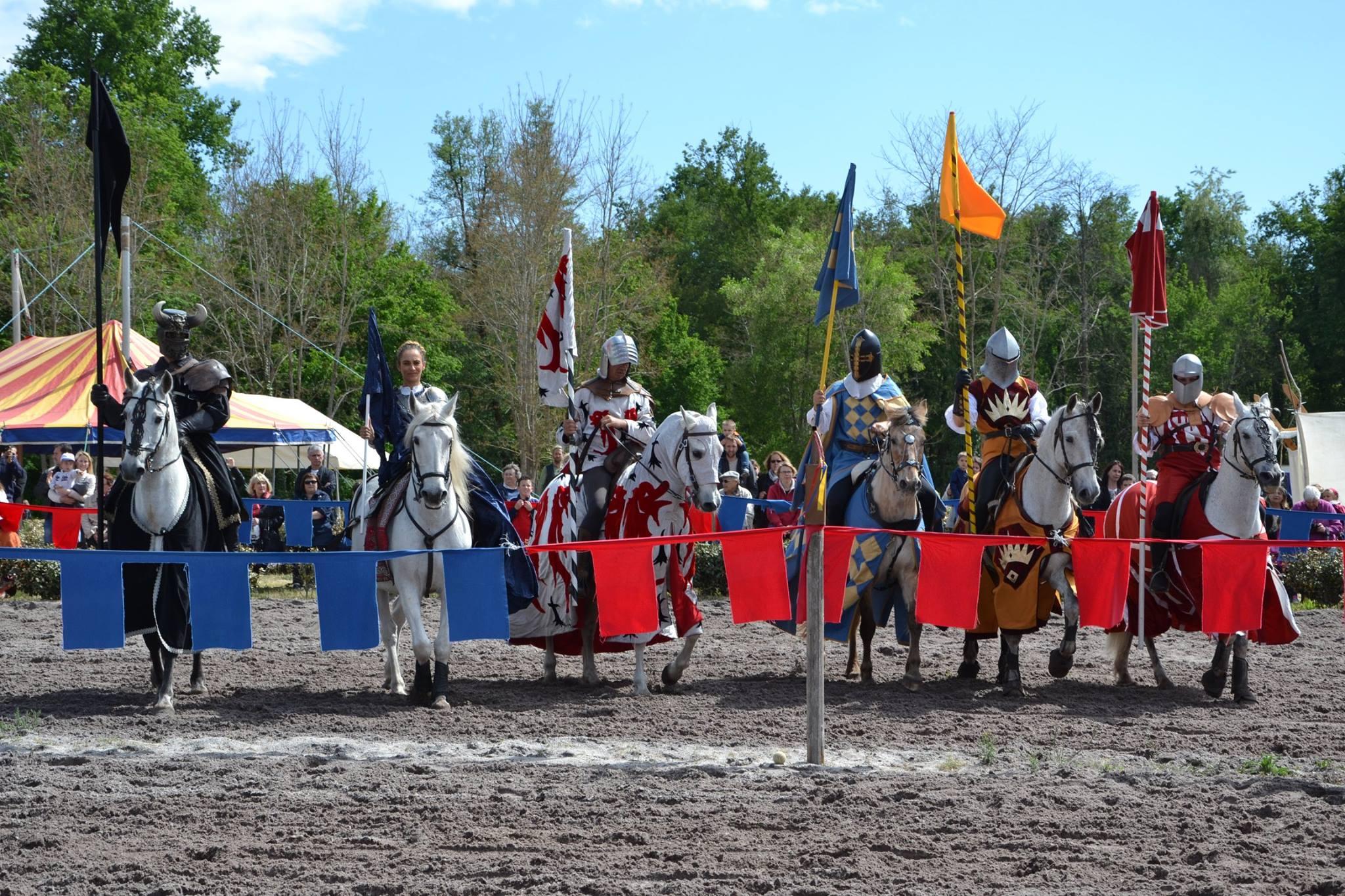 les chevaliers devant lice
