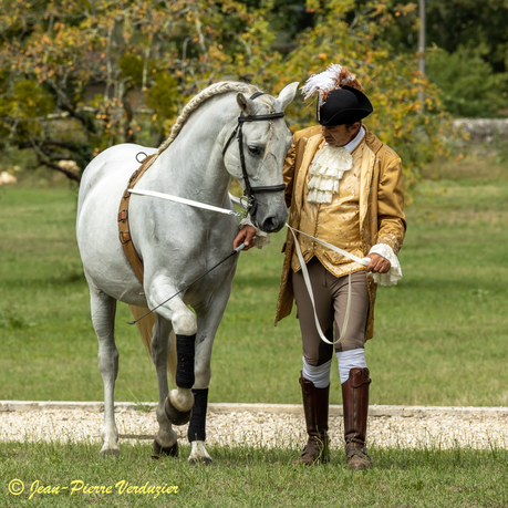 Spectacle_Equestre_du_23_Août_2020-7776