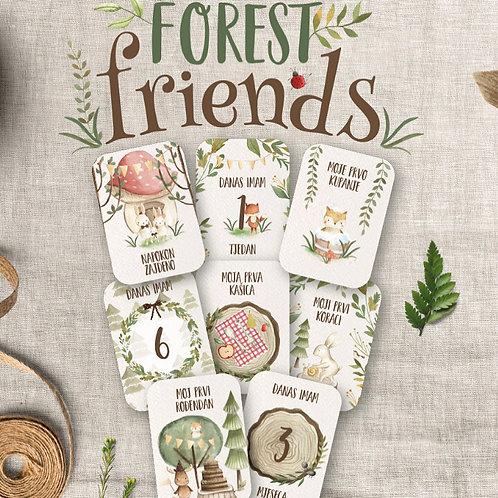 Kartice za bebe FOREST FRIENDS