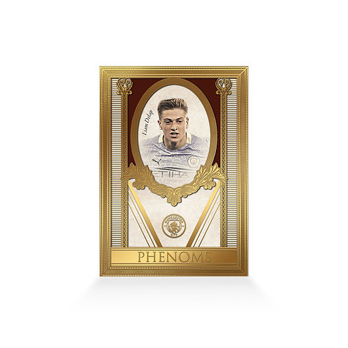 Liam Delap Phenoms 24ct Gold Plated Framed