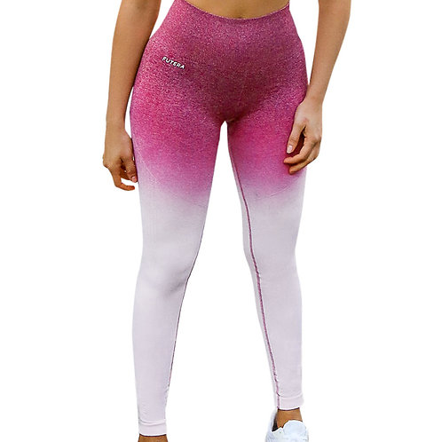 Fade Seamless Leggings