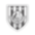 Adelaide City FC logo