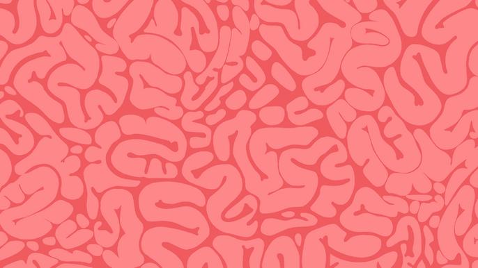 brain1.png