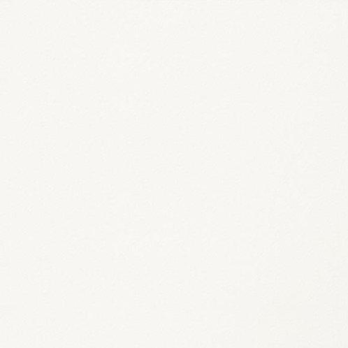 Pared Ara Blanca 1.24 m2