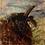 Hebridean Trihorn sheep portrait