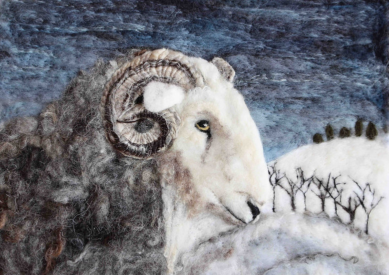 Winter Herdwick ram greetings card