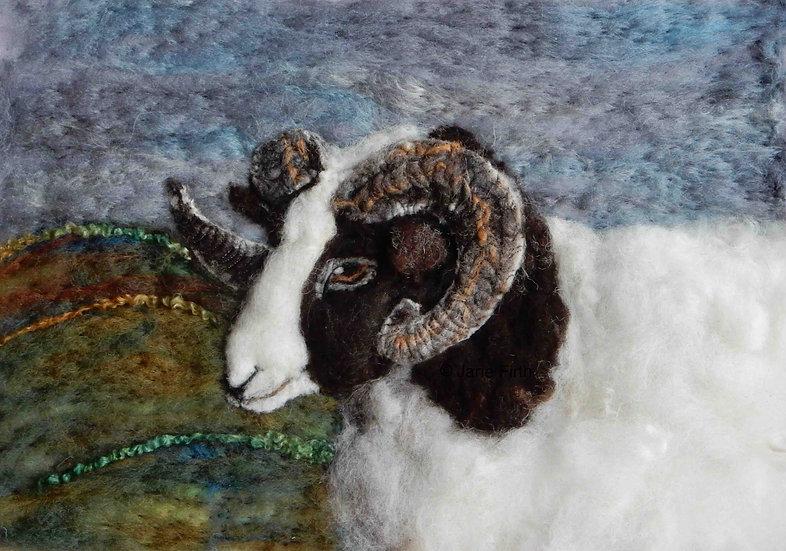 Jacob sheep fibre art portrait