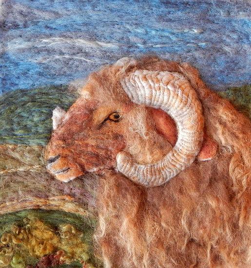 Awassi fibre art sheep portrait