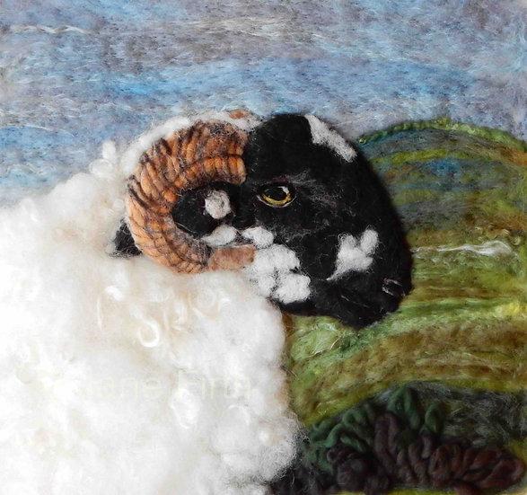 Lonk fibre art sheep portrait
