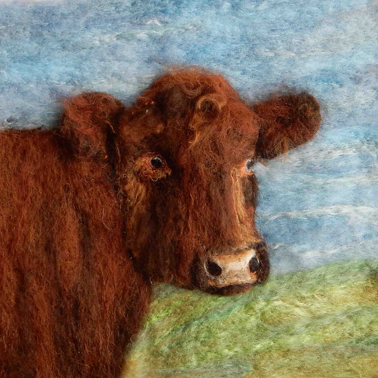 Lincoln Red cow portrait