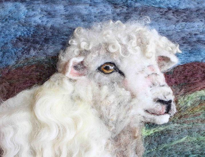 Devon and Cornwall Longwool sheep greetings card
