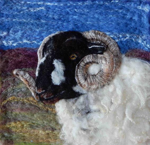Lonk ram fibre art portrait