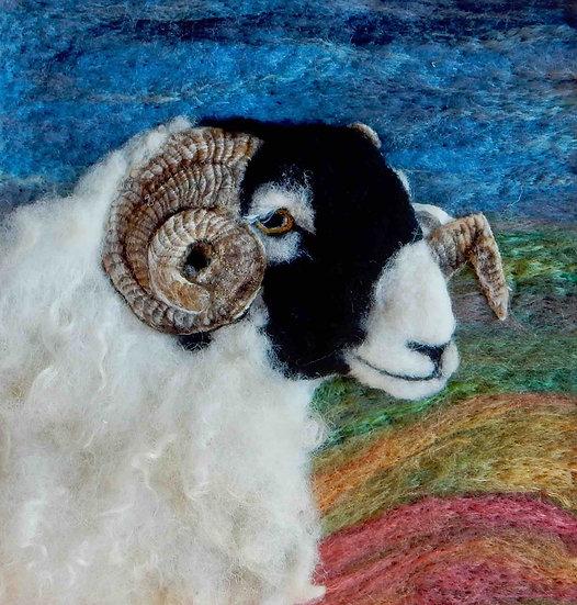 Fibre art Swaledale ram portrait