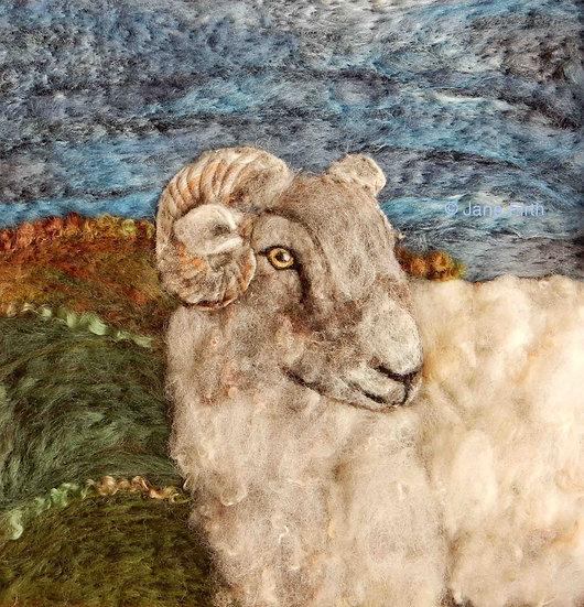 Hill Radnor fibre art sheep portrait