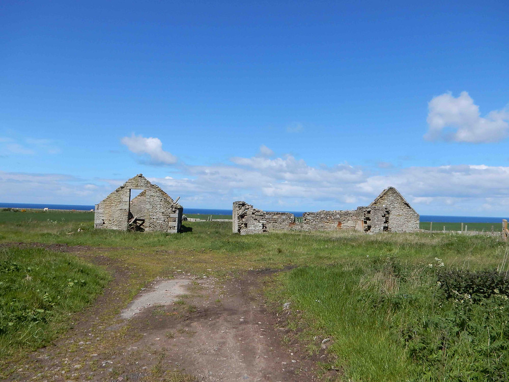 Abandoned Croft, northern Scotland, near Dounreay