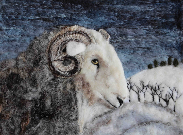 Herdwick ram greetings card