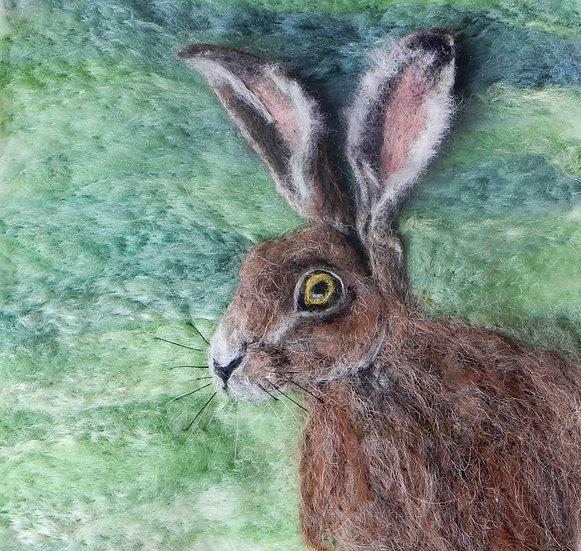 Hare 14