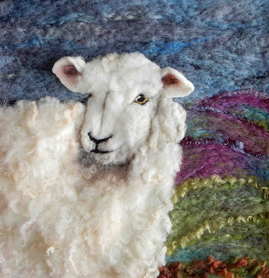 Devon Closewool