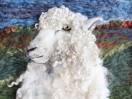 Leicester Longwool Sheep - the ancestor of many modern breeds
