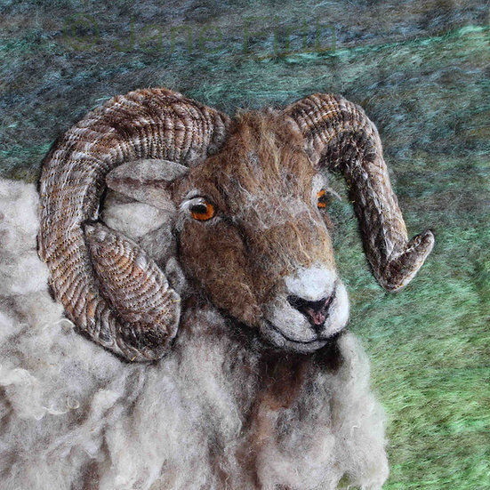 Fibre art North Ronaldsay ram portrait