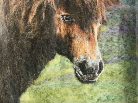 Animal Magic - an article about my work published in Cumbria Life in march 2021