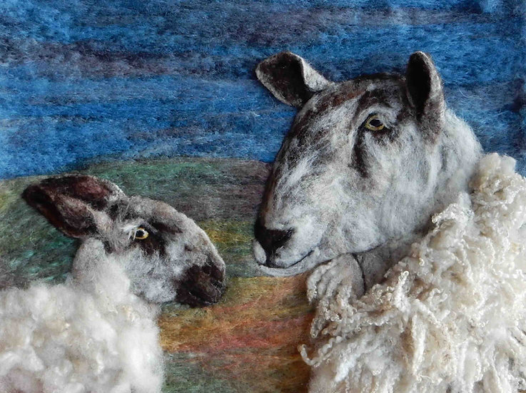 Bluefaced Leicester ewe and lamb portrait
