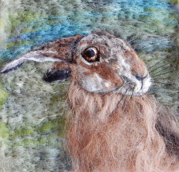 Hare 8