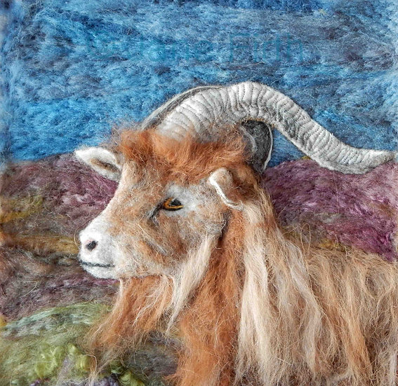 Golden Guernsey goat greetings card