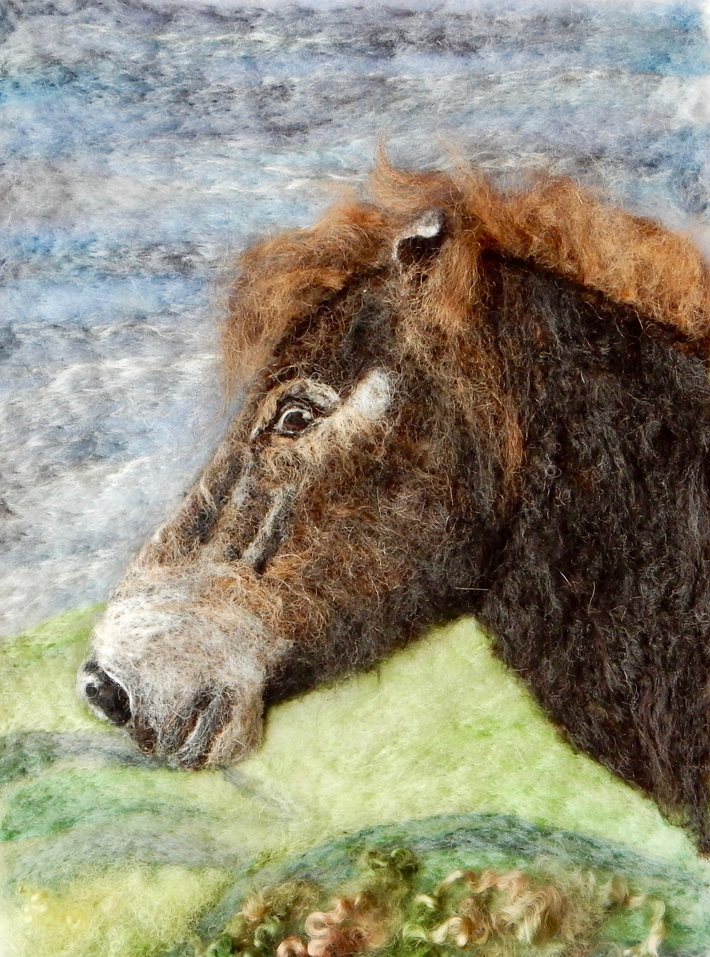 Exmoor pony portrait from a photograph taken in the Exmoor National Park
