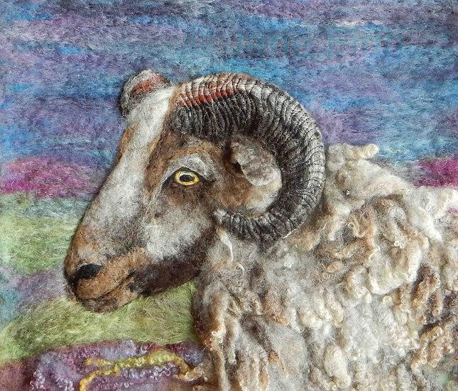Shetland ram fibre art portrait