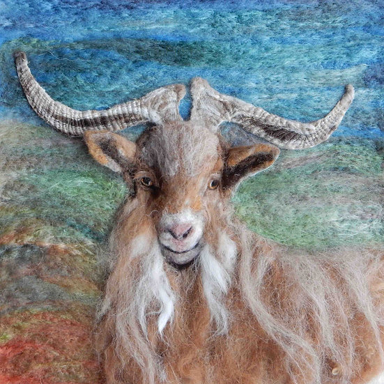 Golden Guernsey billy goat portrait